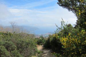 Elba Wandern - auf schmalem Pfad durch die Insel Macchia