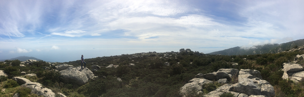 Panorama mit Korsika auf dem Elba Rundwanderweg