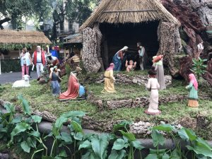 Weihnachtsgrippe in Funchal