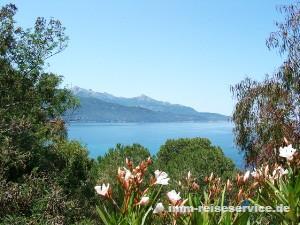 Insel Elba, Ferienhaus Elba,