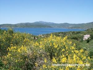Elba-Urlaub im Frühling in einer Elba-Ferienwohnung, einer Elba-Villa oder einem Elba-Ferienhaus von IMM Reiseservice