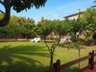 Ferienwohnung Elba mieten - Ferienwohnung Barbarossa - Il Limone in Porto Azzurro
