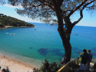 Ferienwohnung Elba mieten - Ferienwohnung Villa Tina Appartamento in Pareti